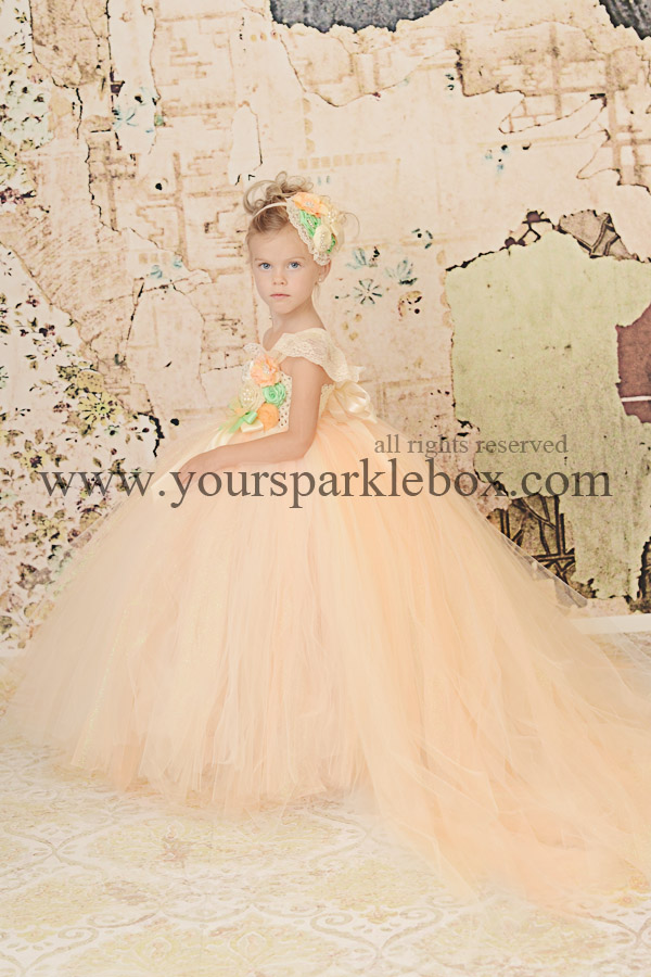 Peach and Mint Perfection Tutu Dress